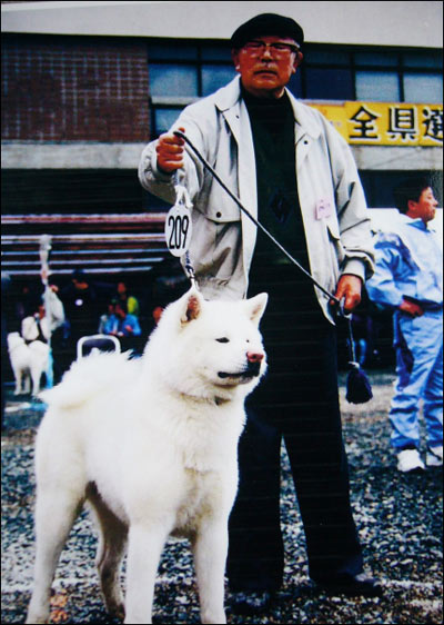 Morie Sawataishi and Shiro, his champion of the 1990's