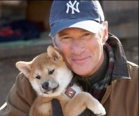 Gere and Akita puppy co-star